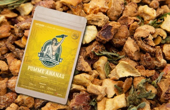 Infusion CBD Pomme Ananas 1