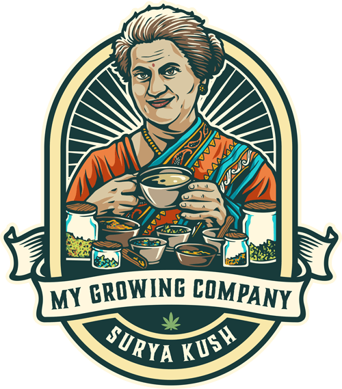 thé tea surya kush tisane cbd infusion relax my growing company